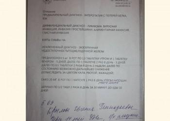 03.09.2017 Вет. клиника РУНД