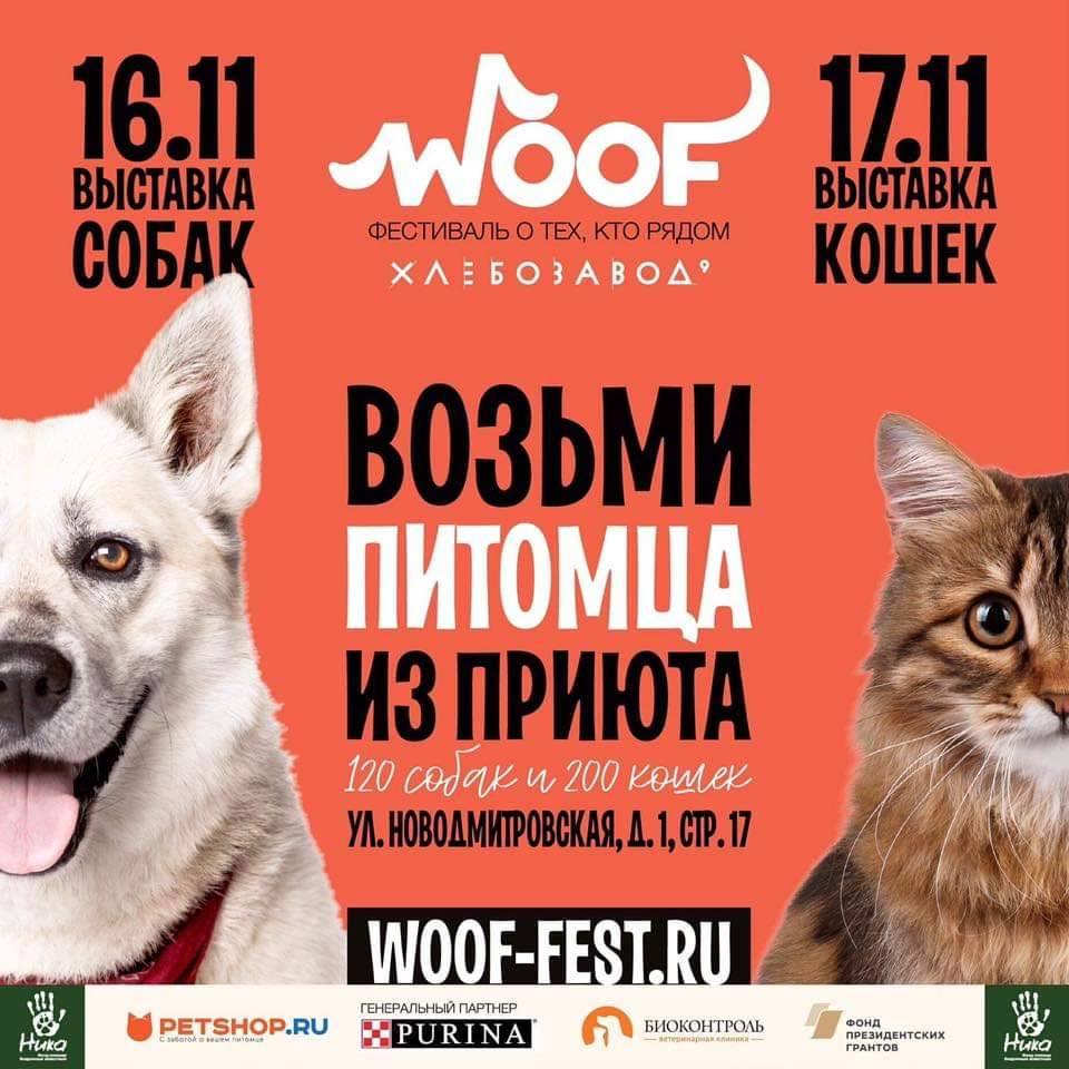 Фестиваль в поддержку животных из приютов WOOF