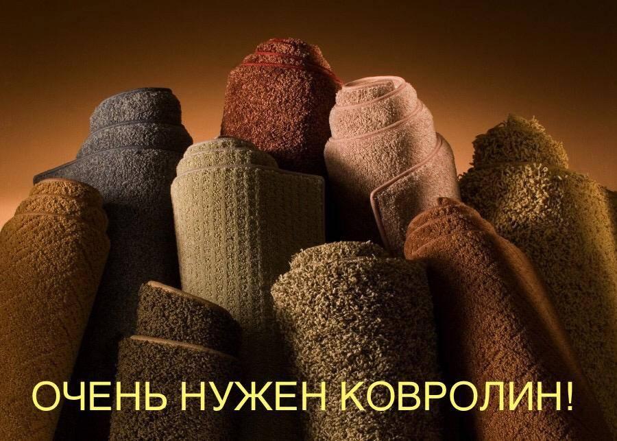 В приют очень нужен ковролин!