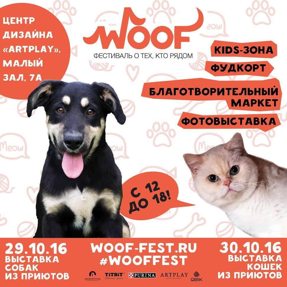 """""""Woof"""" - фестиваль о тех, кто рядом"""